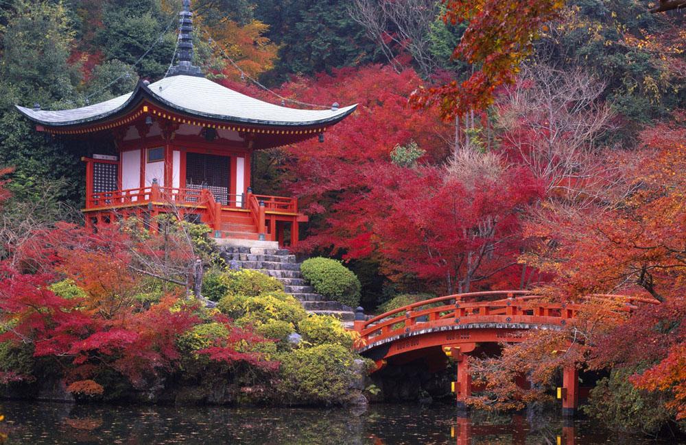 Tradizione e natura, Giappone