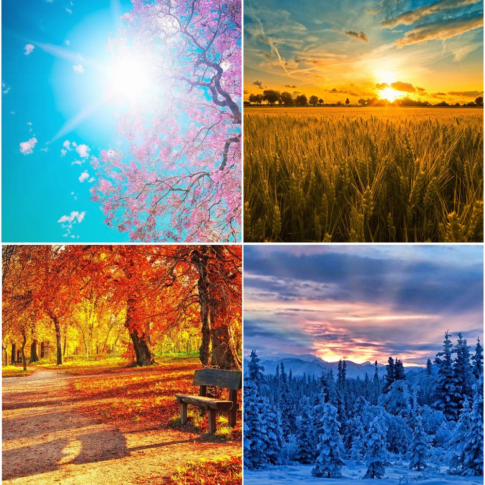 I colori delle quattro stagioni