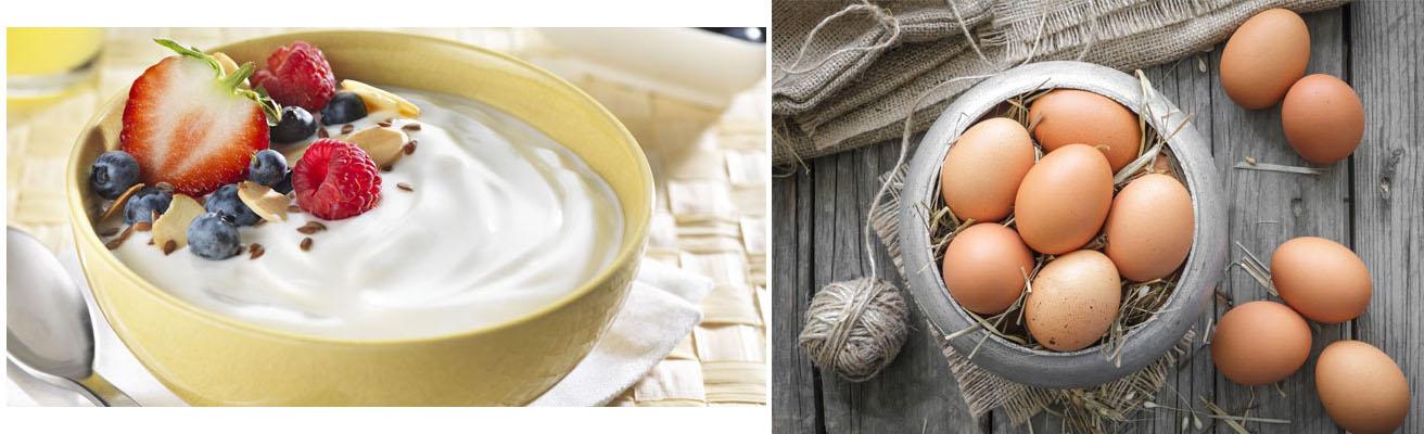 I fermenti lattici e la forza delle uova