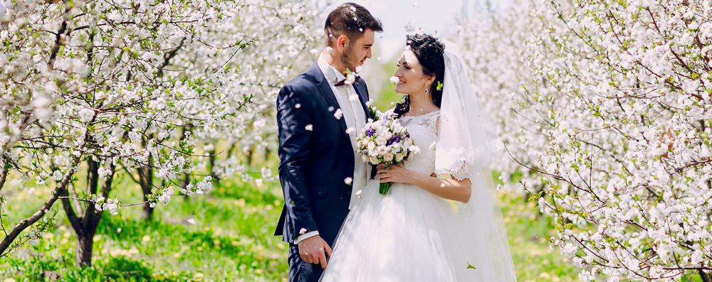 Matrimonio primaverile (Freepik)